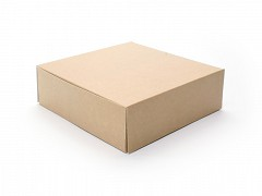 5100 - Milieu-kraft dozen 17 x 17 x 8 cm