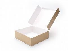 991211 - Milieu-kraft dozen 25 x 25 x 5 cm