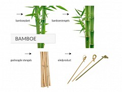 Bamboe knoopprikkers 21 cm