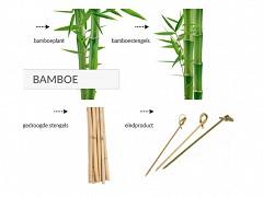 Bamboe knoopprikkers 9 cm