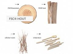 852.720 - FSC houten ijslepeltjes 96 mm