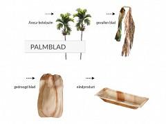 801.220 - Vierkante palmblad borden 17 x 17 cm