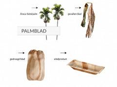 803.920 - Rechthoekige palmblad borden 19 x 9 cm