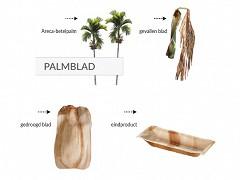803.820 - Rechthoekige palmblad borden 17 x 14 cm