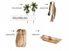 800.820 - Palmblad cateringschalen 36 x 25 x 2,5 cm