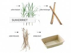 822.020 - Rechthoekige suikerriet vleeswaren tray's 20 x 15,2 x 1,6 cm