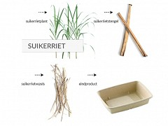 821.520 - Rechthoekige suikerriet borden 26 x 13 x 1,5 cm