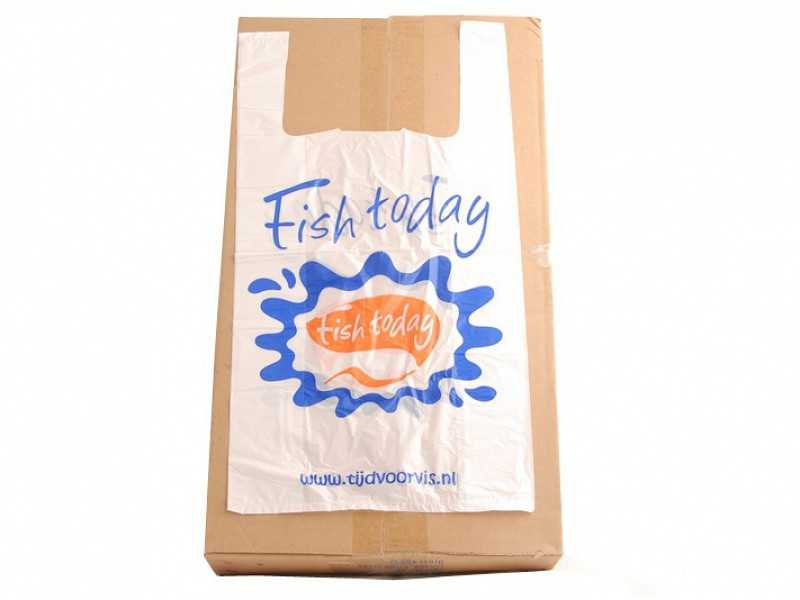 222.0001 - Hemddraagtassen 27 x 48 cm Fish Today