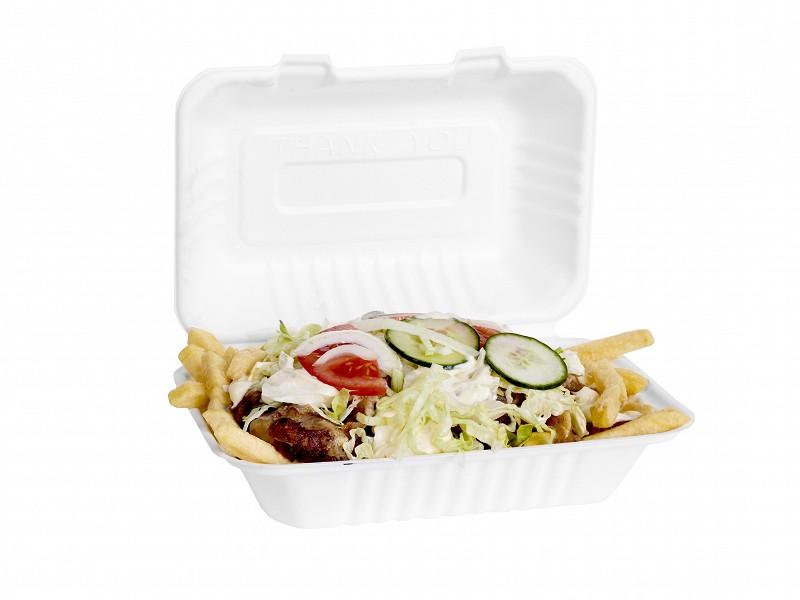 313.0010 - Suikerriet menuboxen 22,8 x 15,3 x 7,6 cm