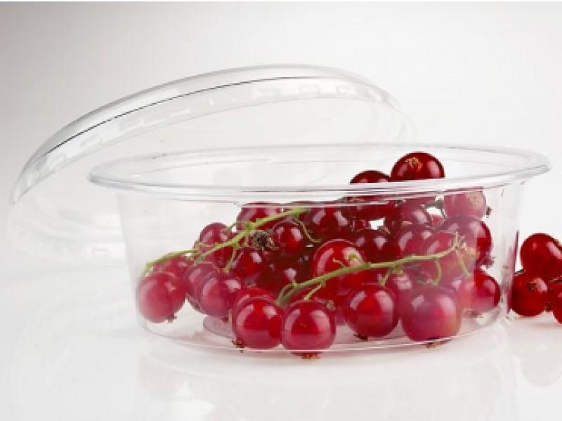 0115 - Ronde saladebakjes 250 ml