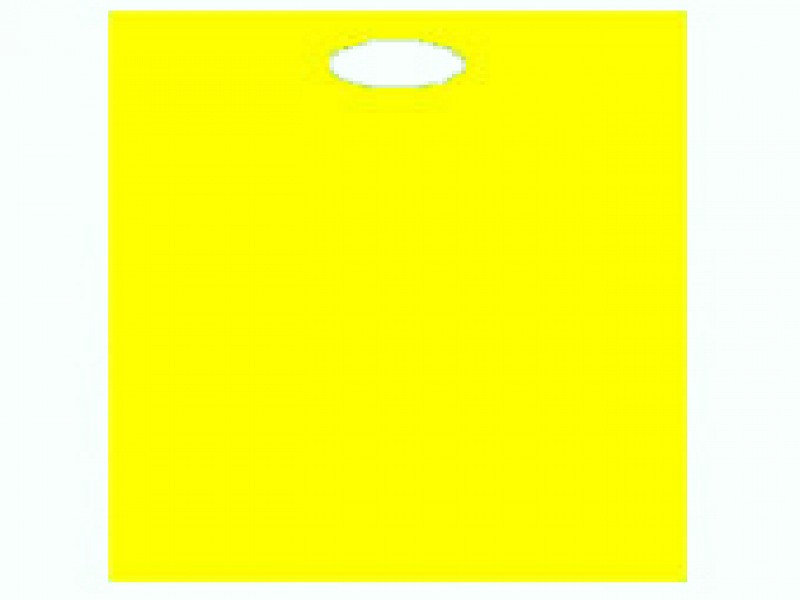 5504 - Plastic draagtassen
