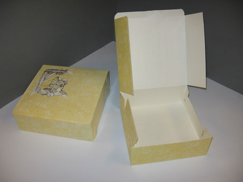 4092 - Gebaksdoos neutraal 27 x 27 x 8 cm